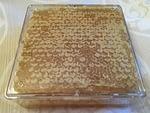 Brighton Honey Comb